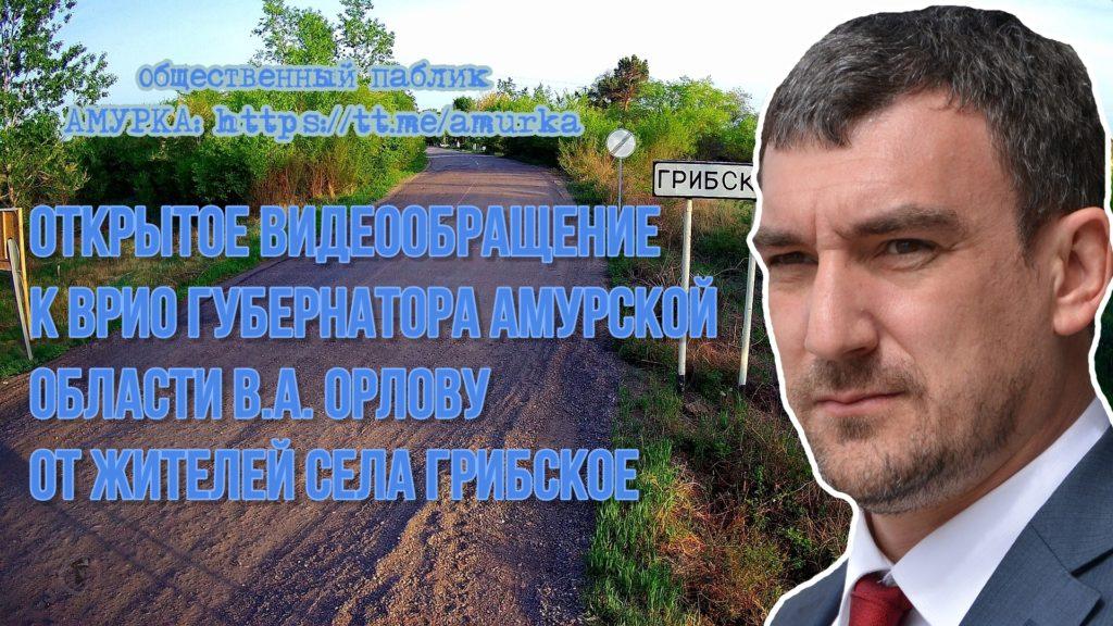 Открытое видеообращение к ВРИО Губернатора Амурской области В. А. Орлову
